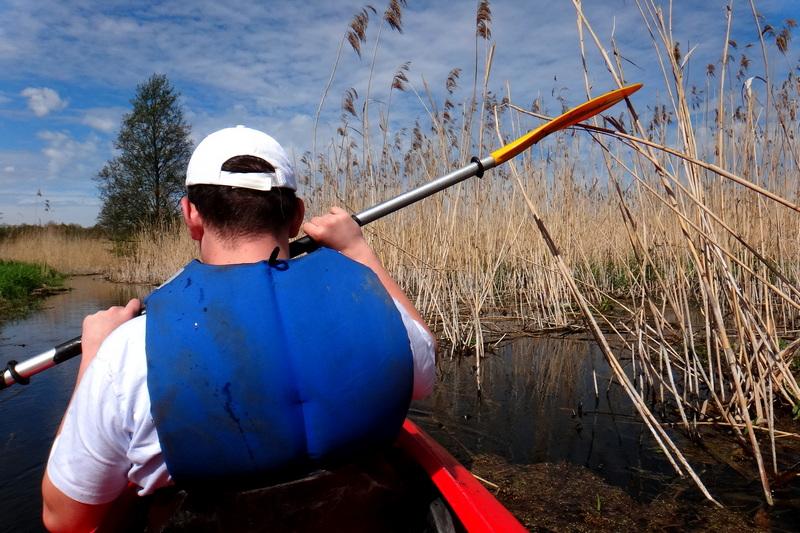 Wpływamy w szuwary jeziora Liwieniec.
