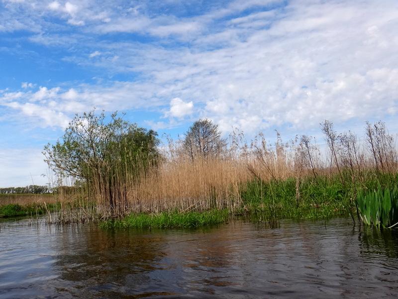 Jezioro Liwieniec.