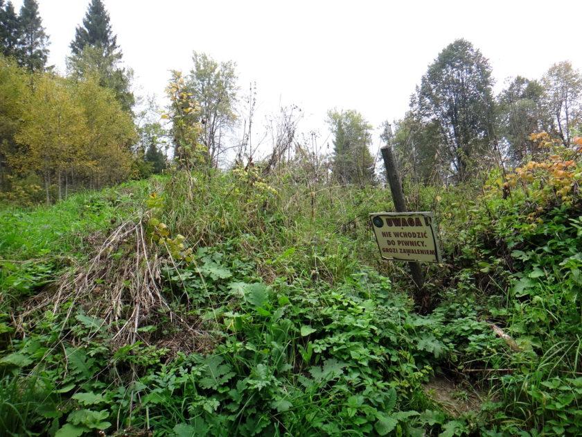 Ruiny dworu Stroińskich na drodze  do źródeł Sanu.