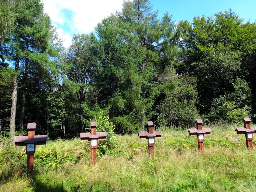 Cmentarz wojenny na Rotundzie. Krzyże żołnierskie.