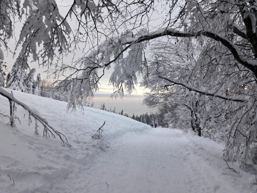 Beskid Śląski zimą. Zachód słońca na Szyndzielni.