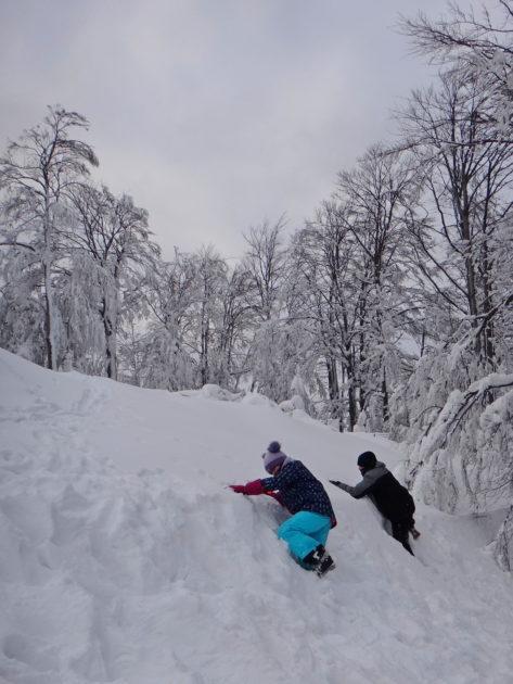 Beskid Śląski zimą. Pod schroniskiem na Szyndzieni.