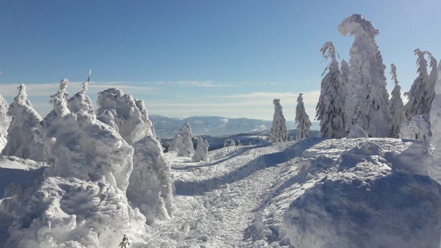 Szczyrk zimą. Śnieżna kraina.