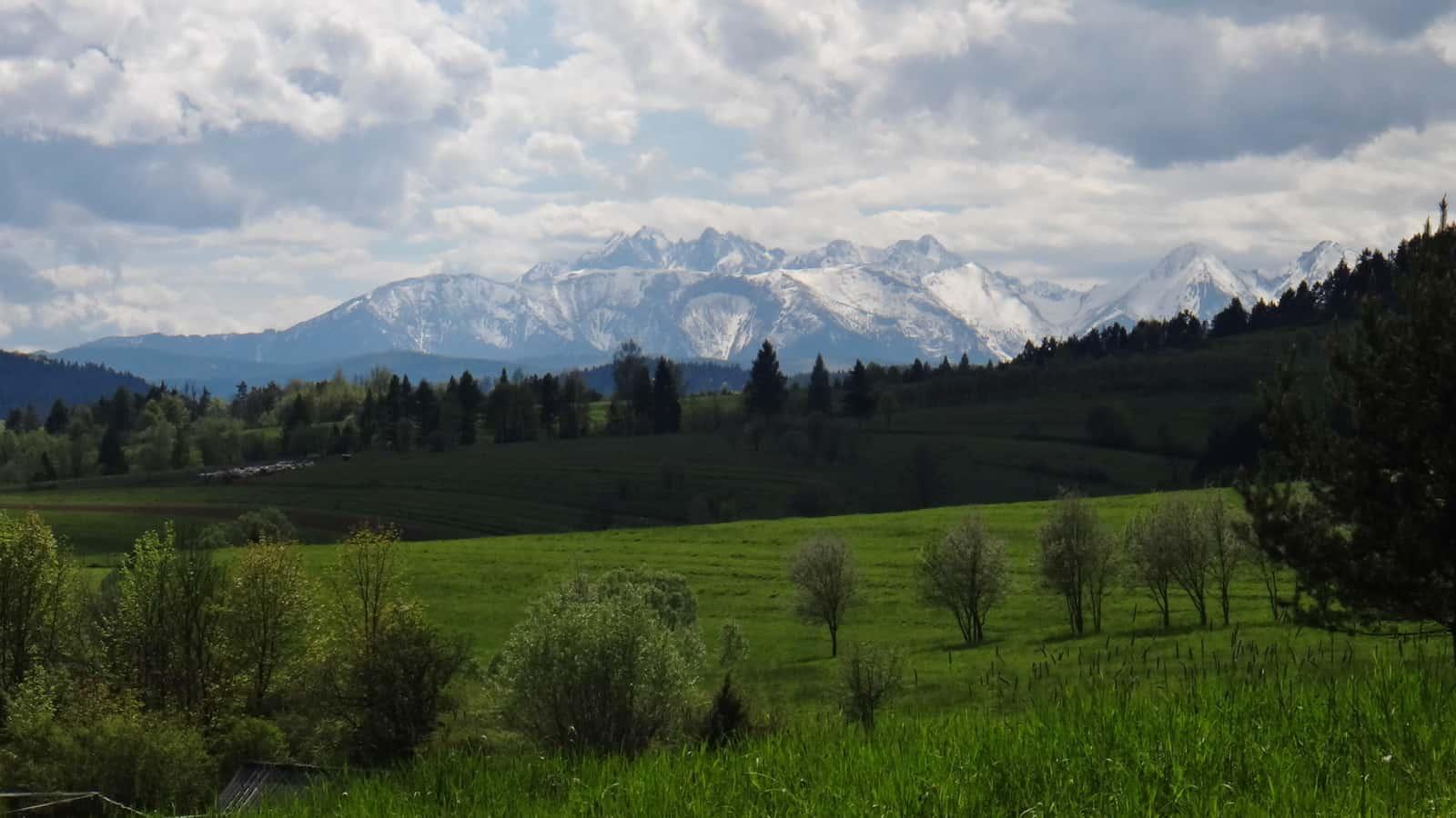 Widok na Tatry spod schroniska Trzy Korony