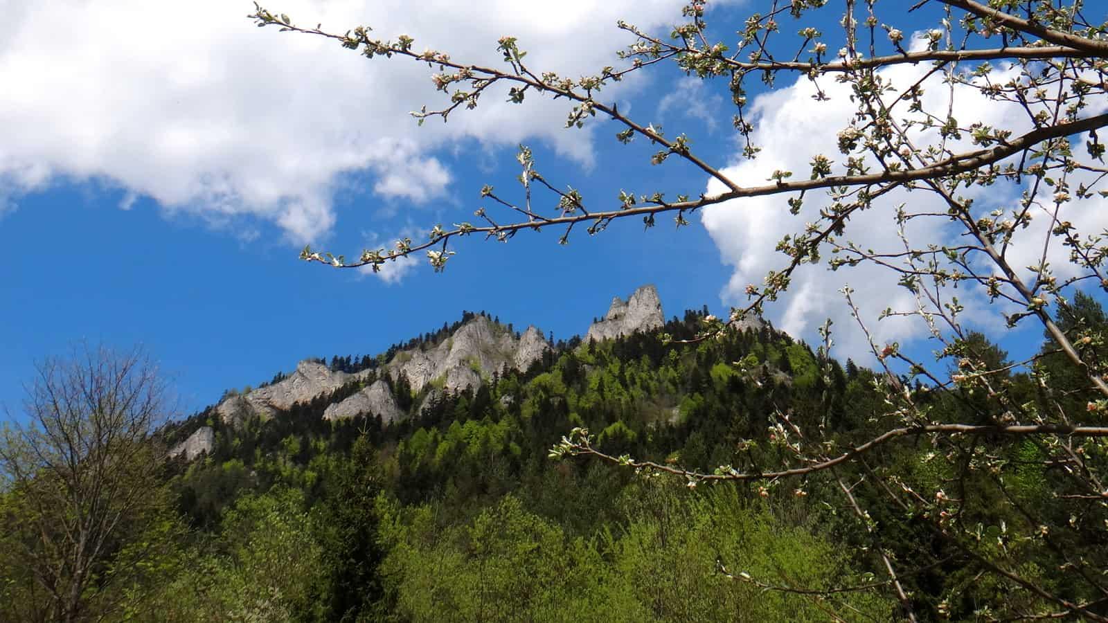 Wiosenne Trzy Korony