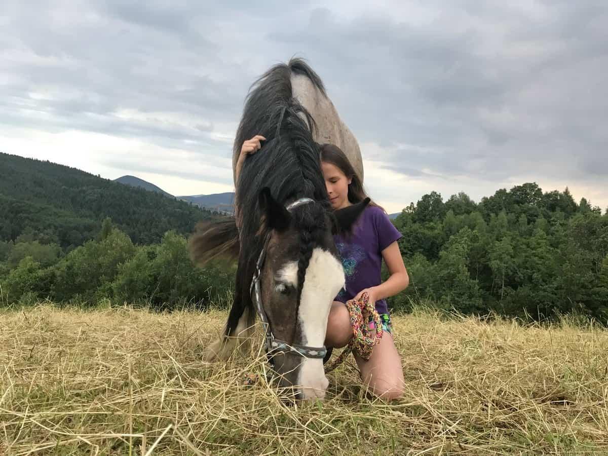 Dziewczynka przytula się do konia.