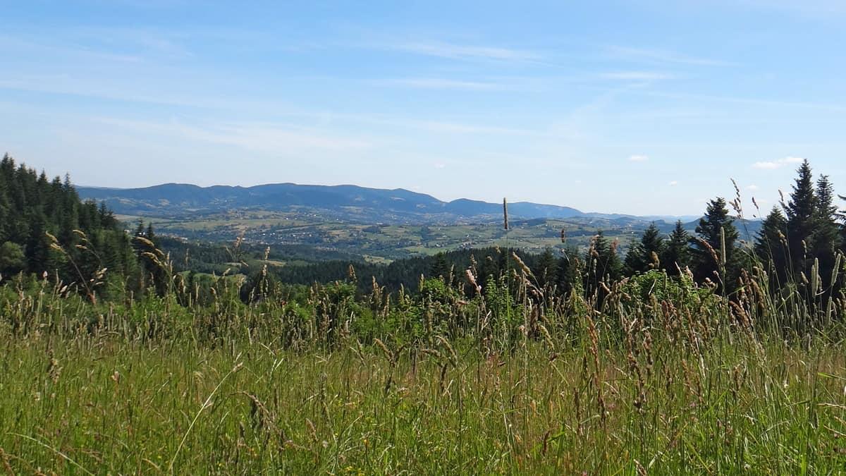 Widok na początku drogi na Mogielicę