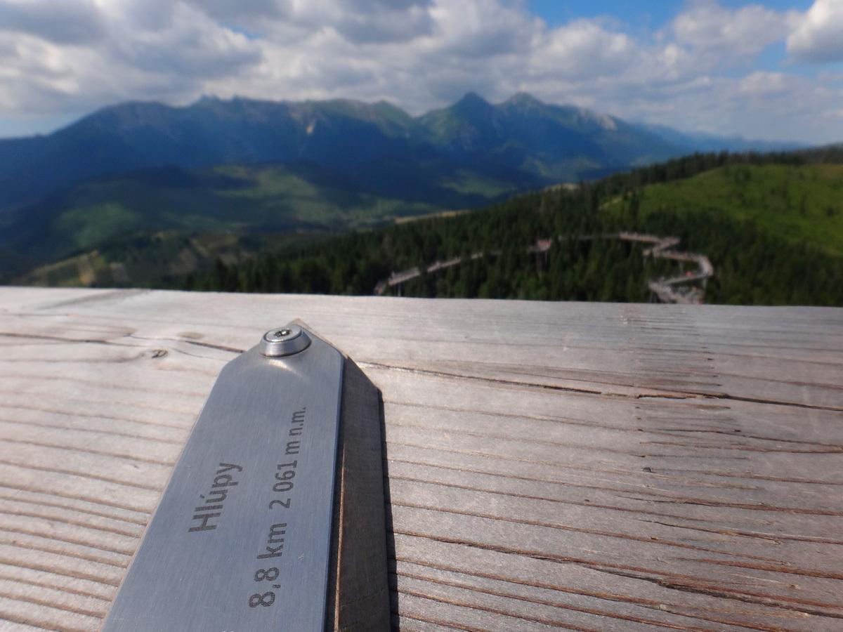 Strzałka wskazująca położenie szczytów na ścieżce wśród koron drzew.