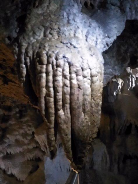Jaskinia Bielska. Stalaktyt w kształcie języka.