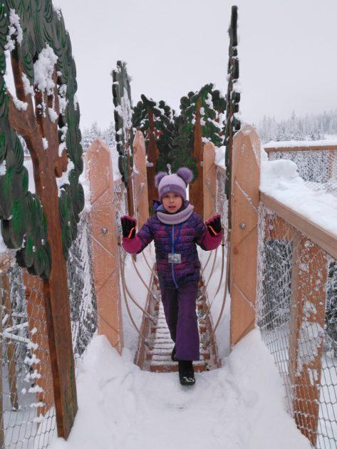 Adrenalinowy przystanek -Atrakcje dla dzieci na ścieżce wśród koron drzew