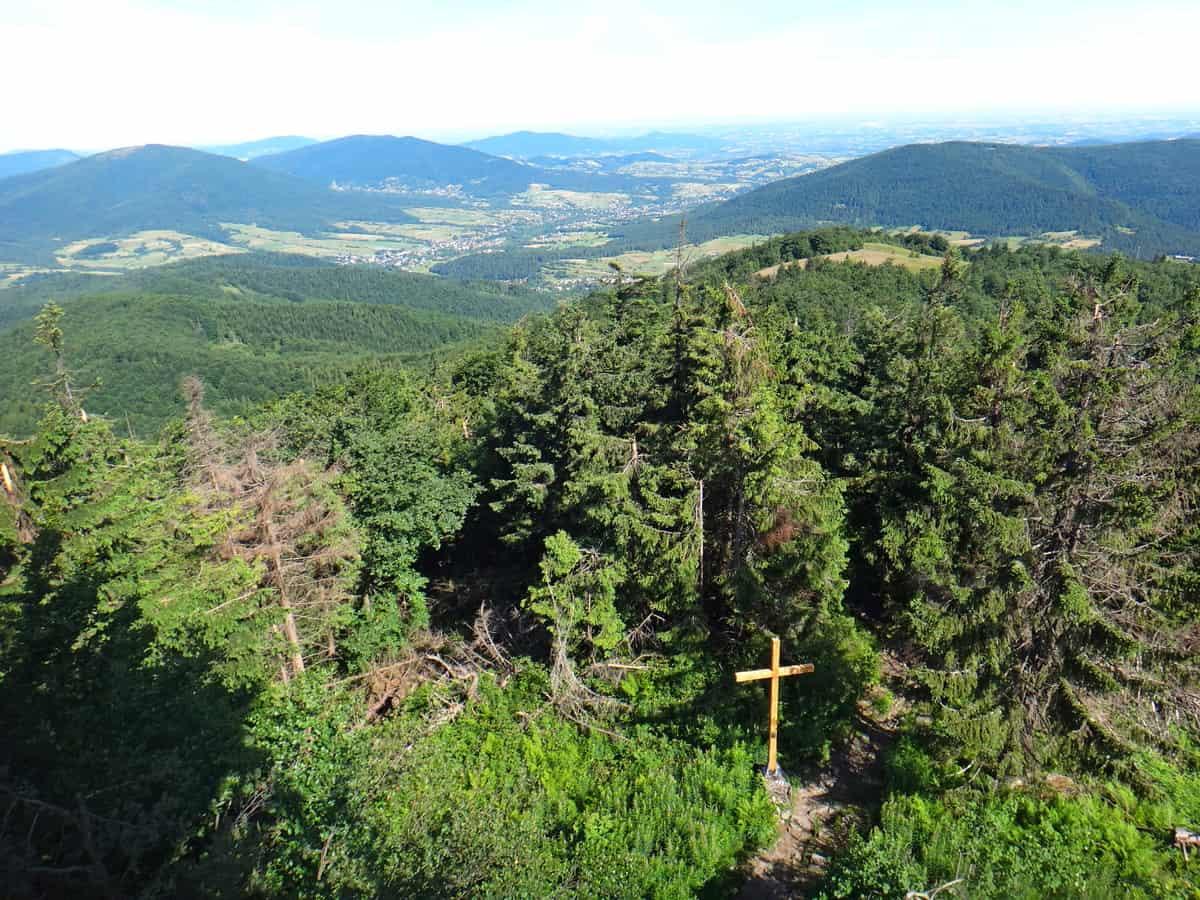 Mogielica oferuje nam piękne widoki. Widok na szczyt i krzyż papieski.