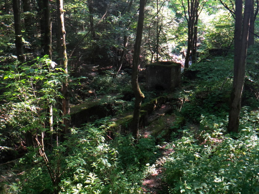 Ruiny tartaku na potoku Kłopotnica w miejscowości Folusz.