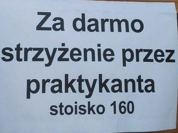 Wrocław - hala targowa.