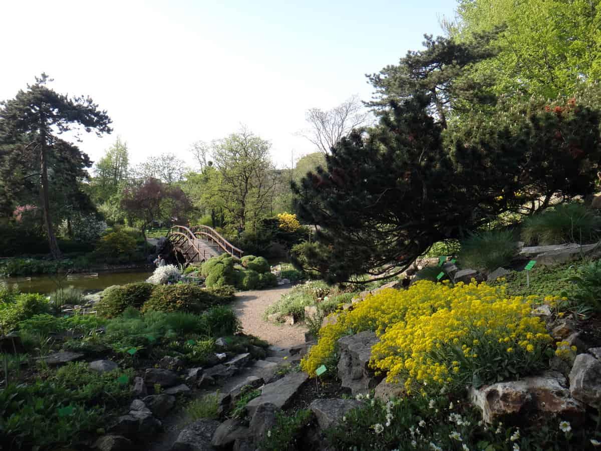 Ogród botaniczny we Wrocławiu.