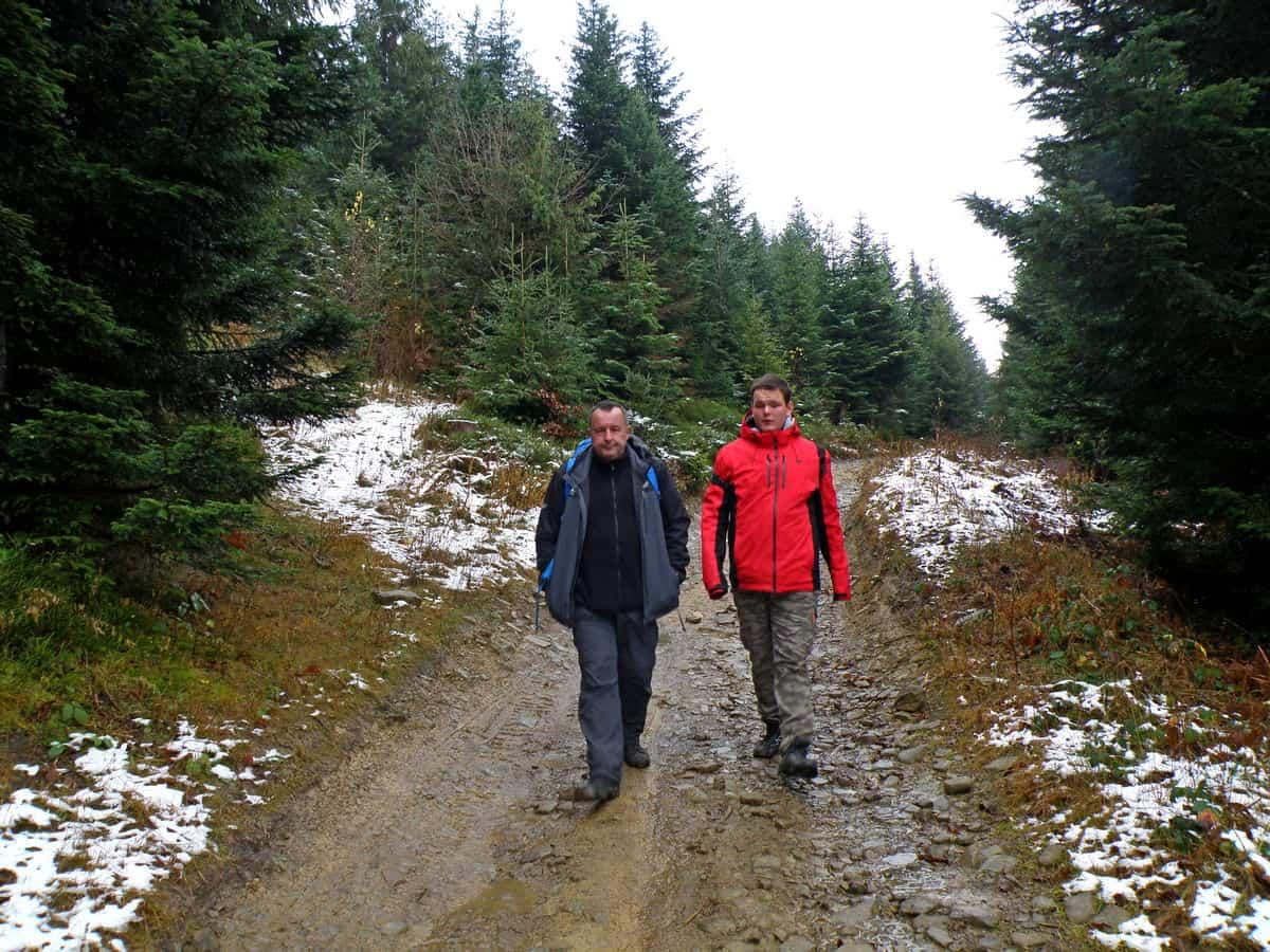 Zejście zielonym szlakiem z Lubonia Wielkiego.