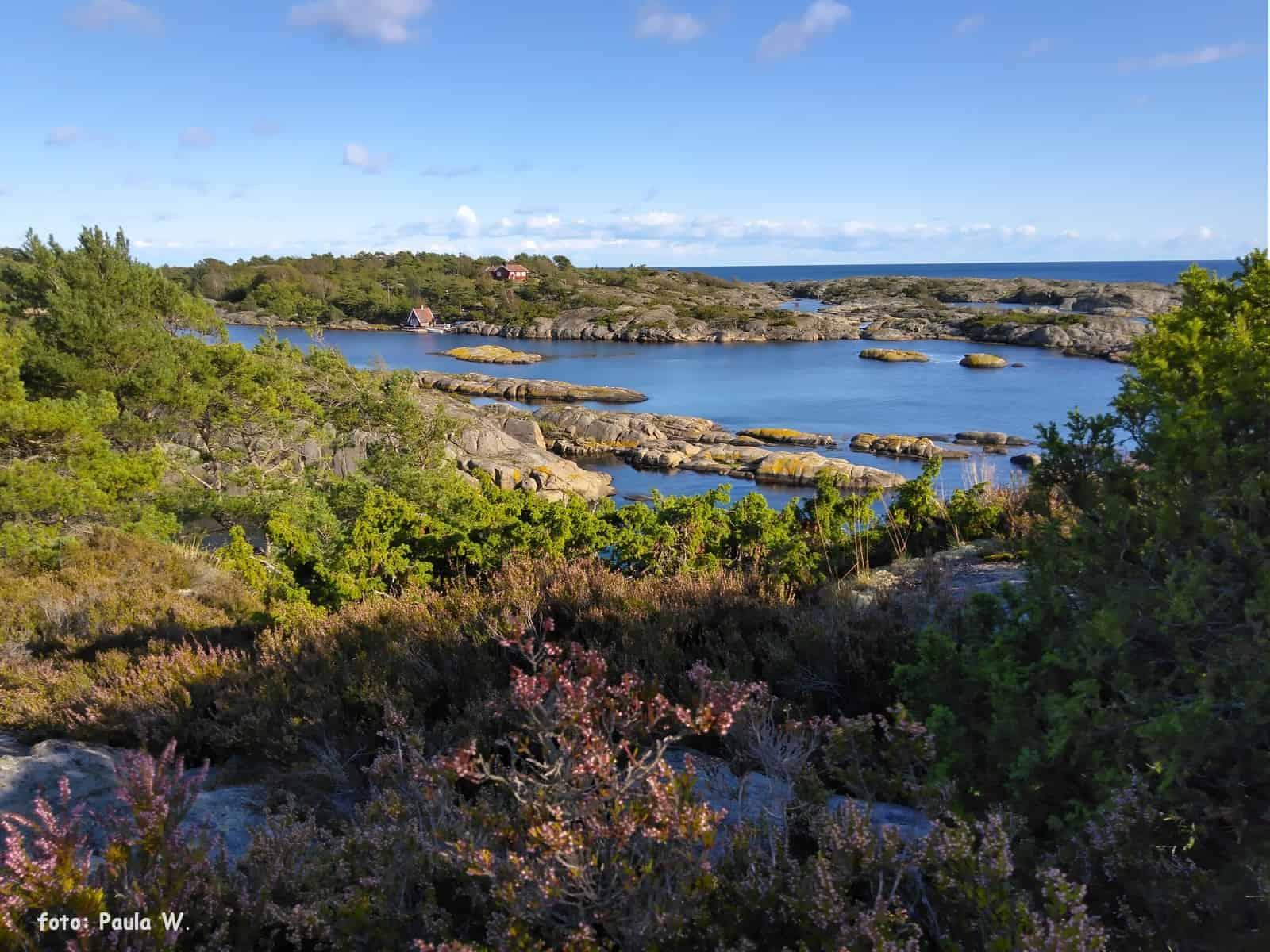 Widoczek z wyspy Lyngøya