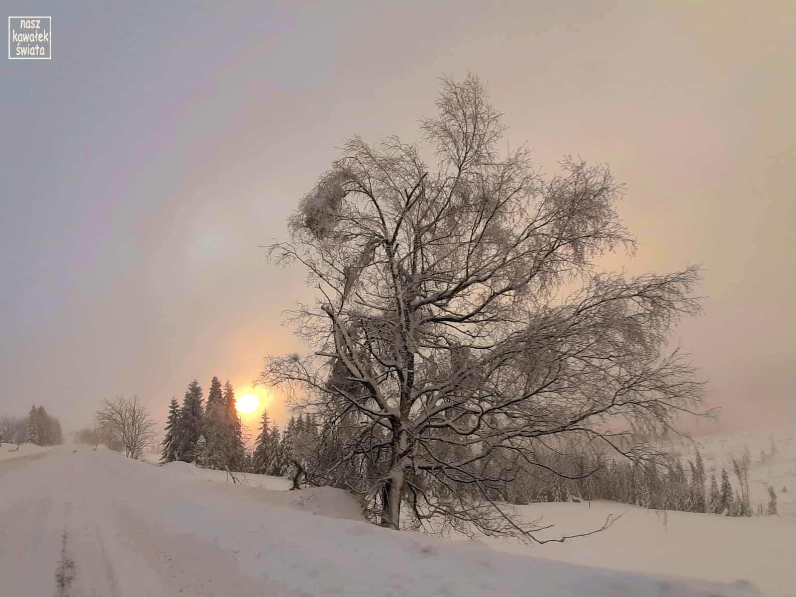Zimowy wschód słońca nad Tatrami.