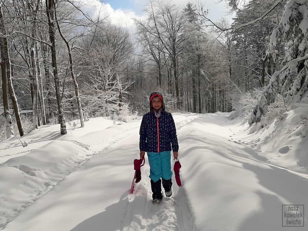 Na trasie narciarstwa biegowego Jagoda.
