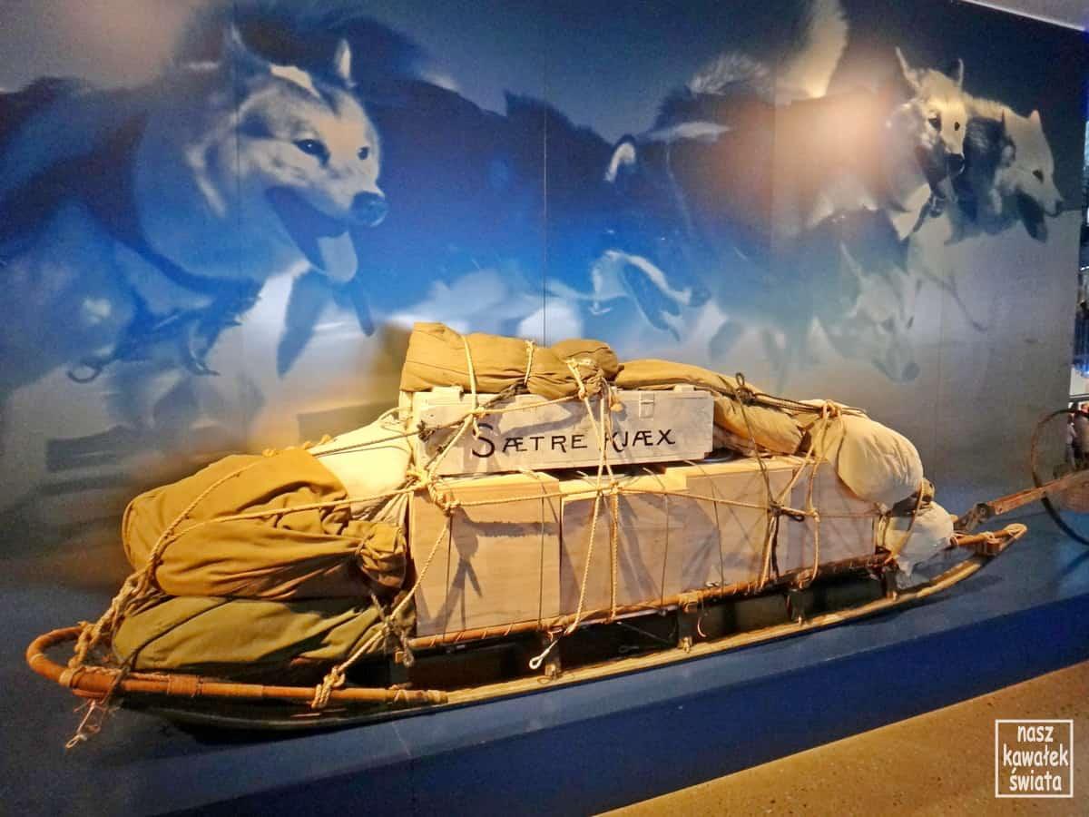 Sanie używane przez norweskie wyprawy polarne