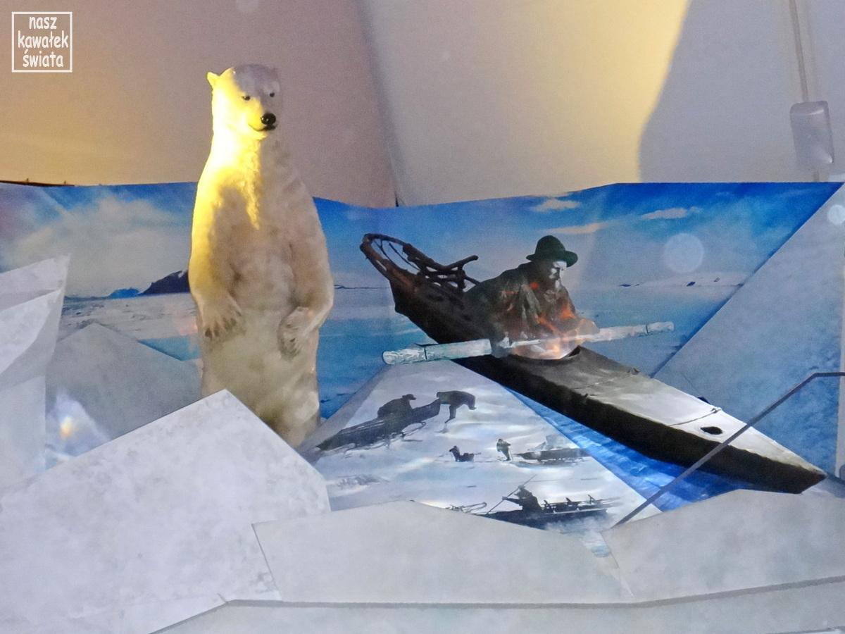 Fridtjof Nansen na kajaku w Arktyce.