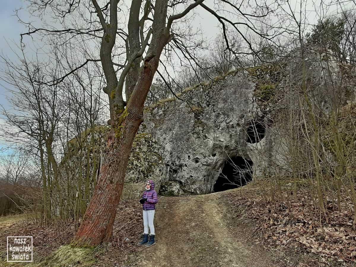 Wejście do Jaskini Jasnej Strzegowskiej w Dolinie Wodącej.