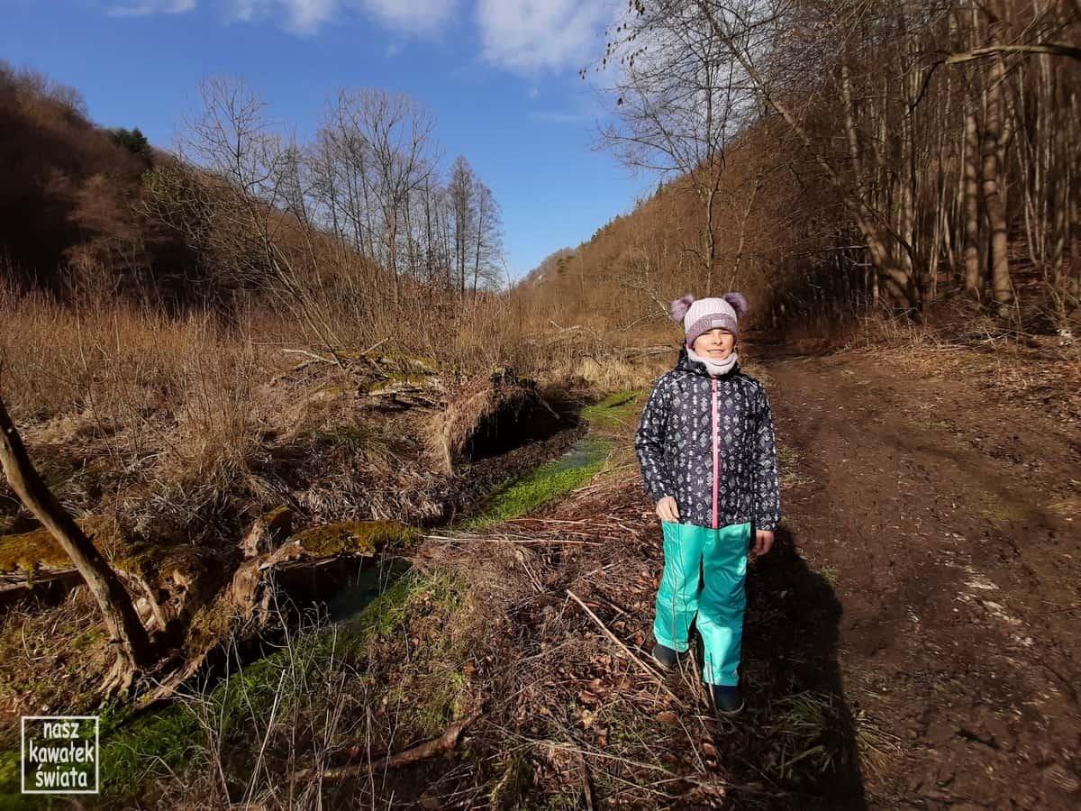 Dolina Sąspowska w lutym.