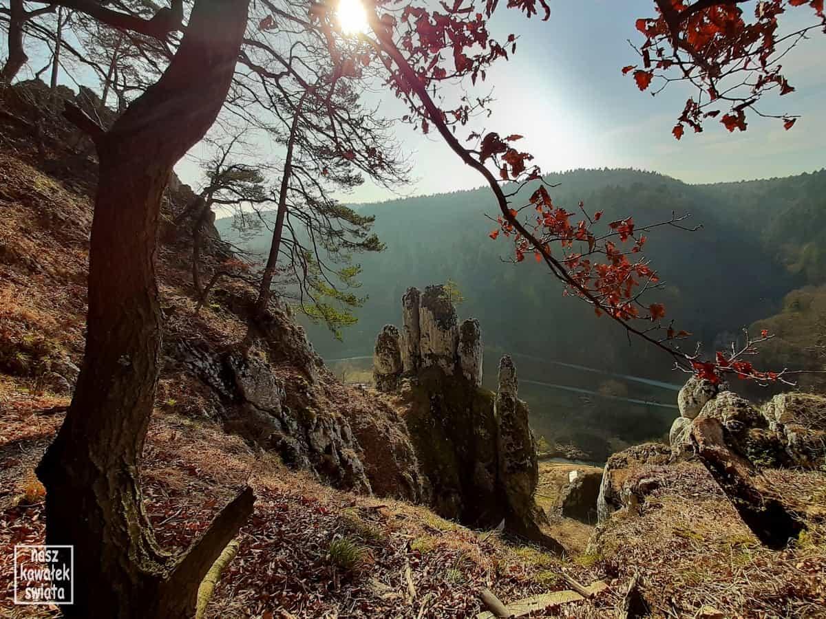 Widok spod Jaskini Ciemnej na skałę Rękawica.