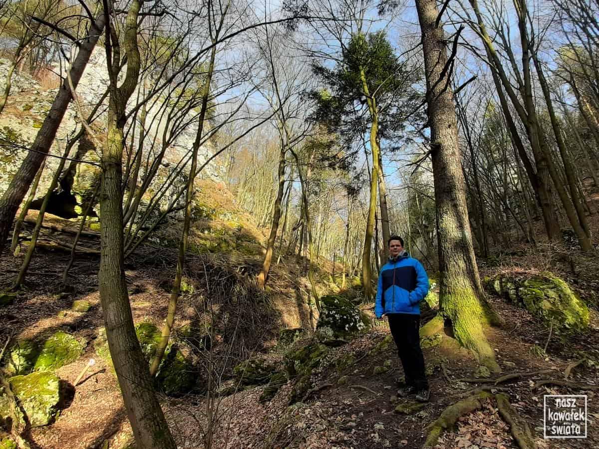 Zejście zielonym szlakiem do Prądnika Czajowskiego.