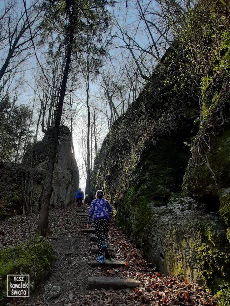 Wejście do Jaskini Psiej w Dolinie Wodącej.