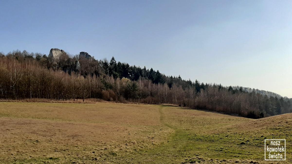 Zegarowe Skały w Dolinie Wodącej.