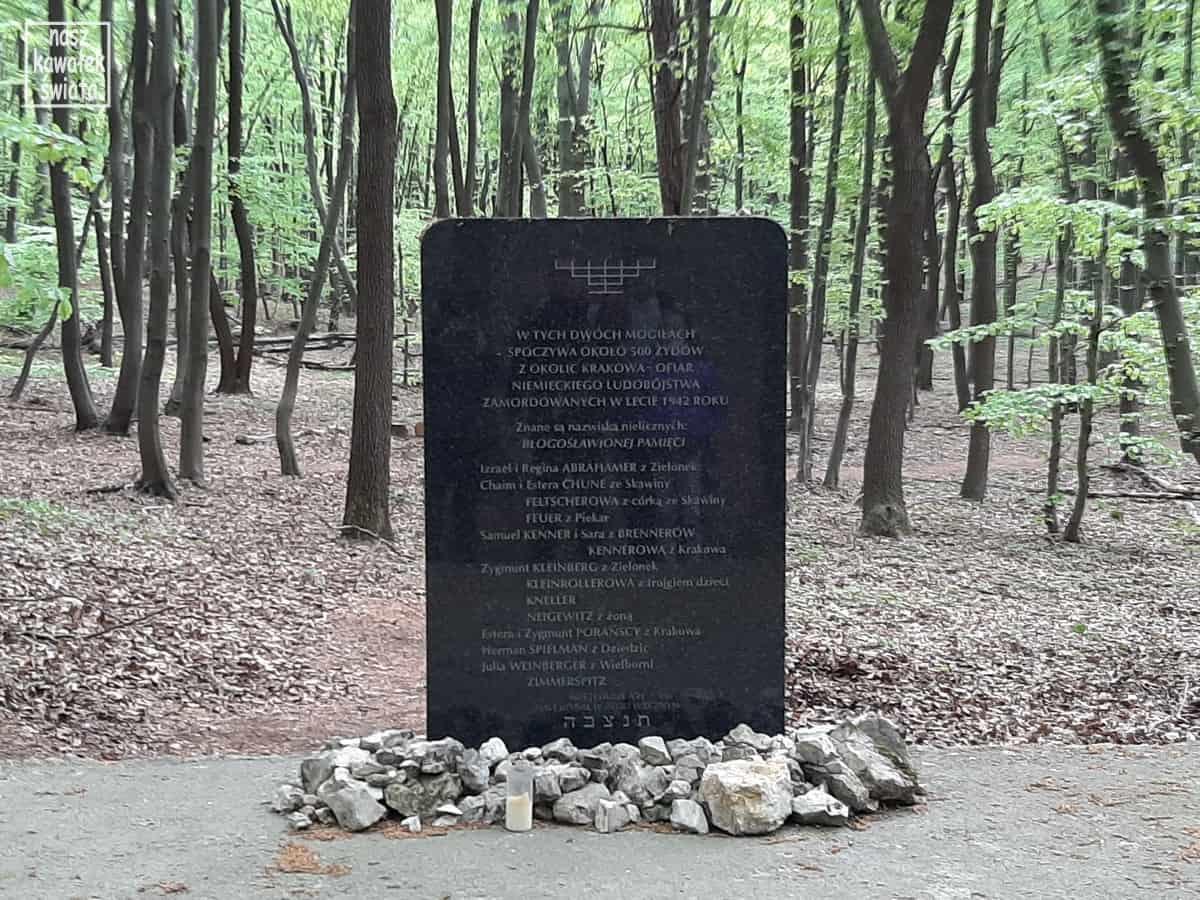 Macewy w miejscu zbiorowych mogił żydowskich na Skołczance.