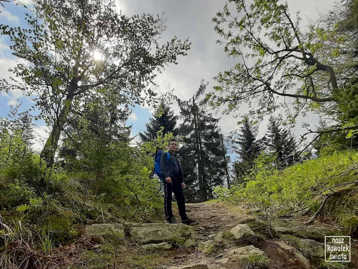 Podejście z Rzyk Praciaków na Przełęcz Anula.