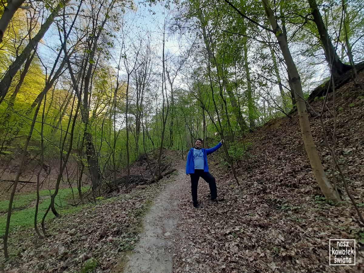 Poniedziałkowy Dół w Lesie Wolskim. Wycieczka z Kopca Kościuszki na kopiec Piłsudskiego.