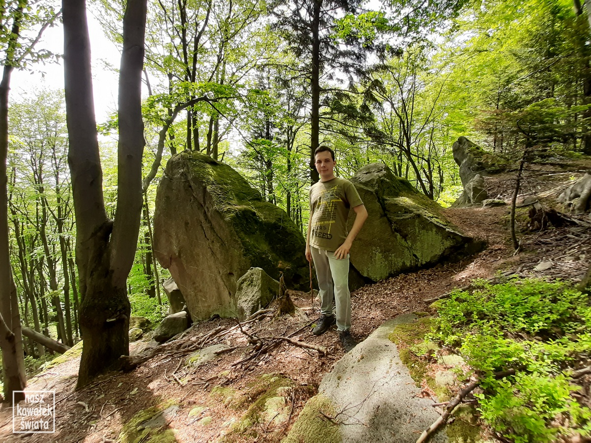 Rezerwat skalny Kornuty.
