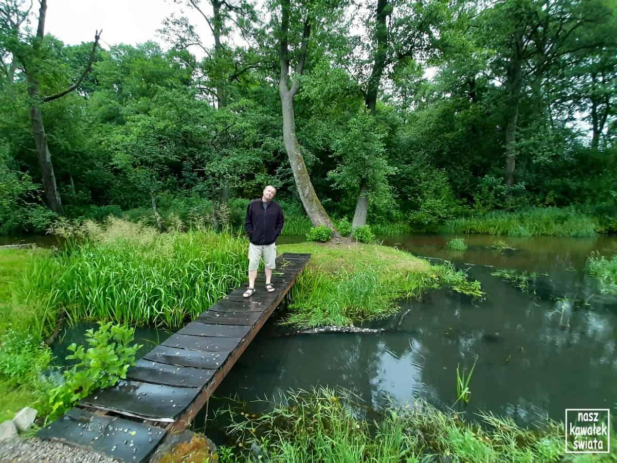 Rzeka Wieprz w Kaczórkach.