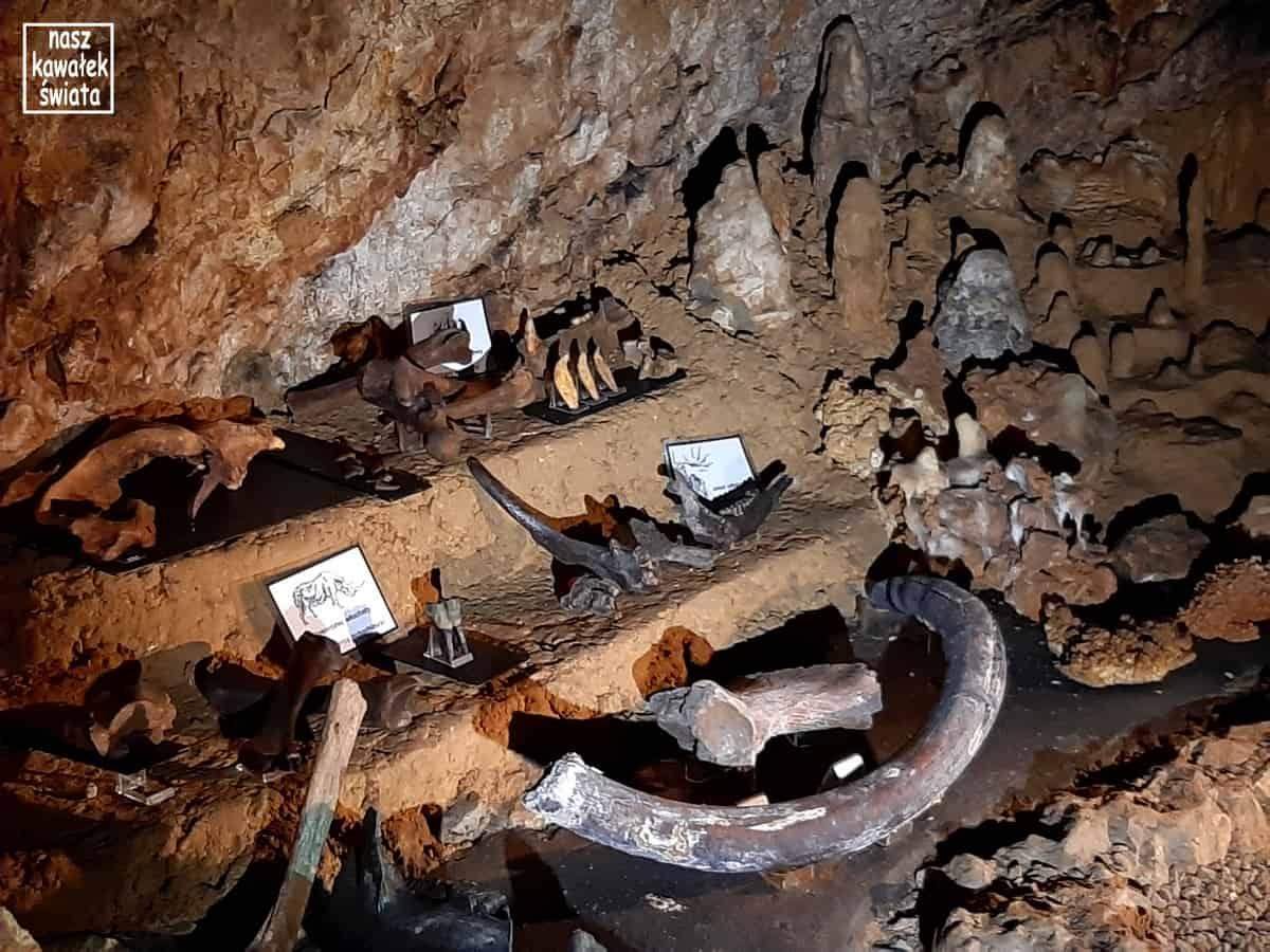 Jaskinia Wierzchowska - ekspozycja w Sali Tronowej.