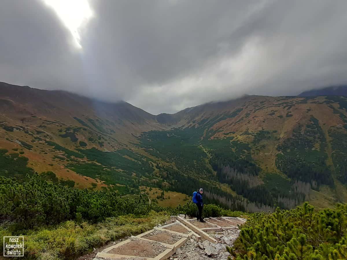 Zejście z Trzydniowiańskiego Wierchu do Doliny Jarząbczej.