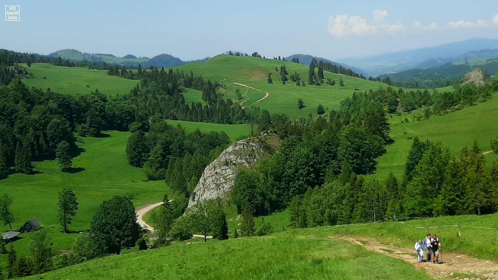 Widok na rezerwat Biała Woda z podejścia na Przełęcz Rozdziela.