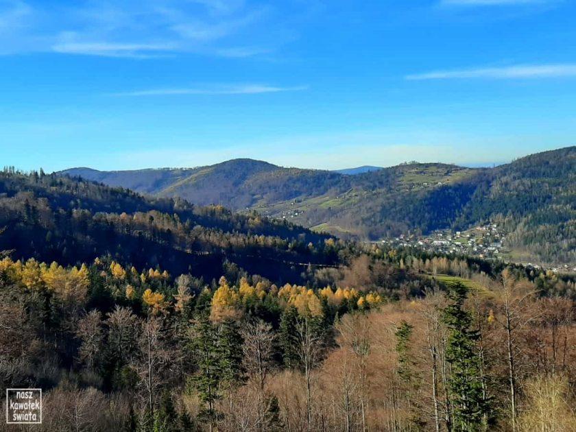 Widok na jesienny las podczas podejścia na Skrzyczne