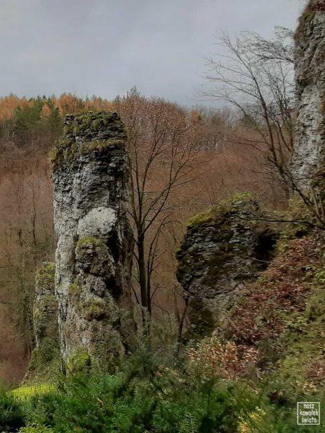 Skalna Maczuga w Dolinie Mnikowskiej.