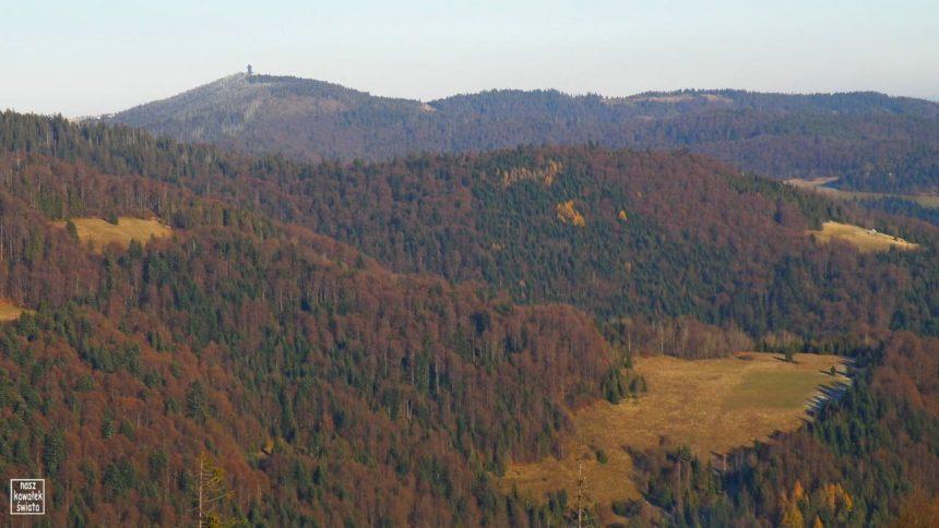 Wieża na Gorcu widziana z Magurek