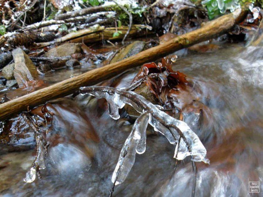 Pierwszy lód na potoku Jaszcze