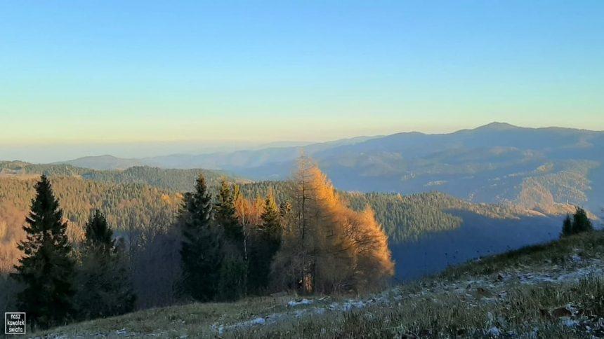 Widok ze Szlaku Wołoskiego na Magurki