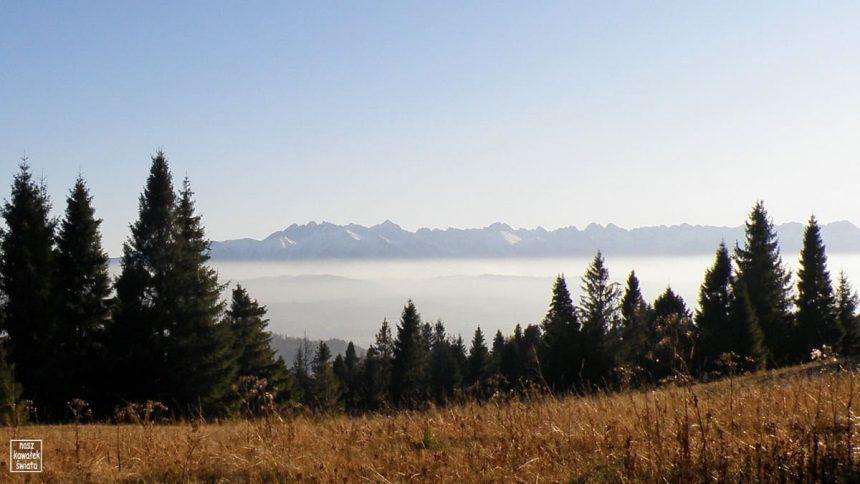 Panorama Tatr z polany na Magurkach
