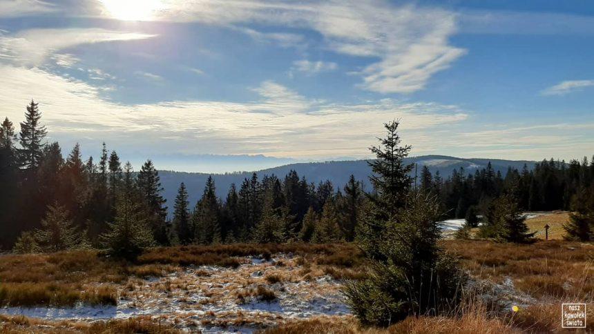 Panorama z Gorca Troszackiego