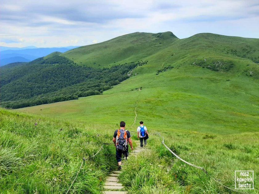 Zejście z Krzemienia, Tarnica na horyzoncie