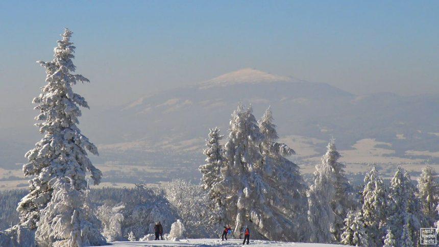 Babia Góra widziana z Maciejowej