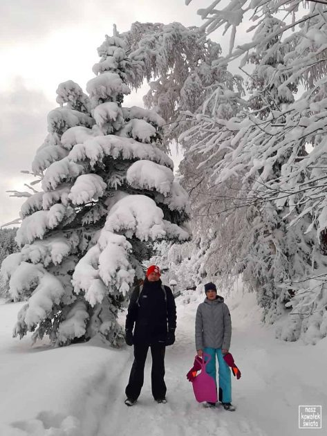 Wejście na zielony szlak w Jasionowie