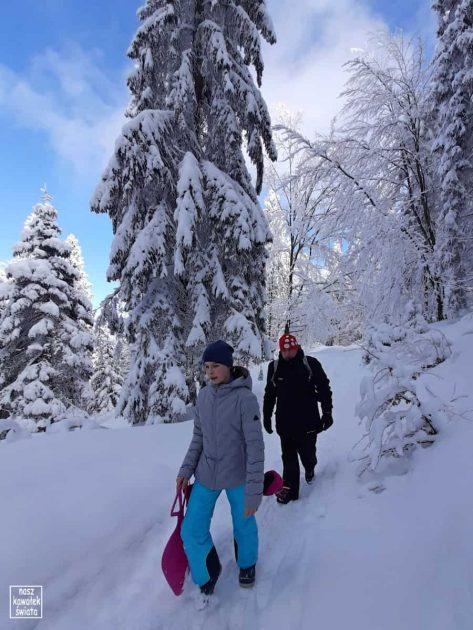 Zimowy szlak na Maciejową