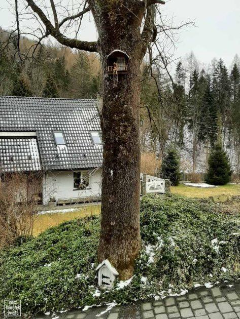 Krasnoludek w Szczawnicy